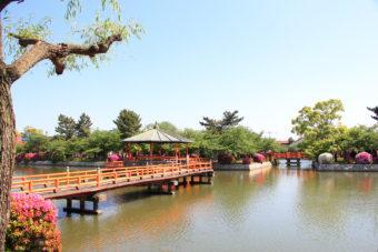 桑名の九華公園での写真撮影がおすすめです♪